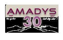 logo-amadys